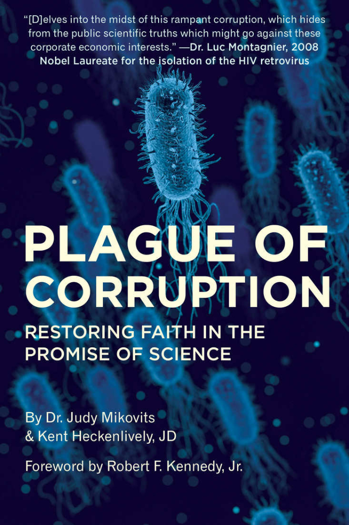 Plague of Corruption book